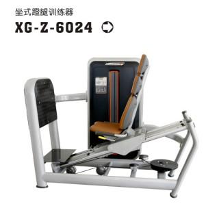xg-z-6024-2